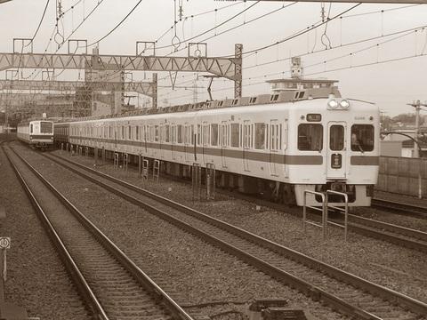 Dscn5447